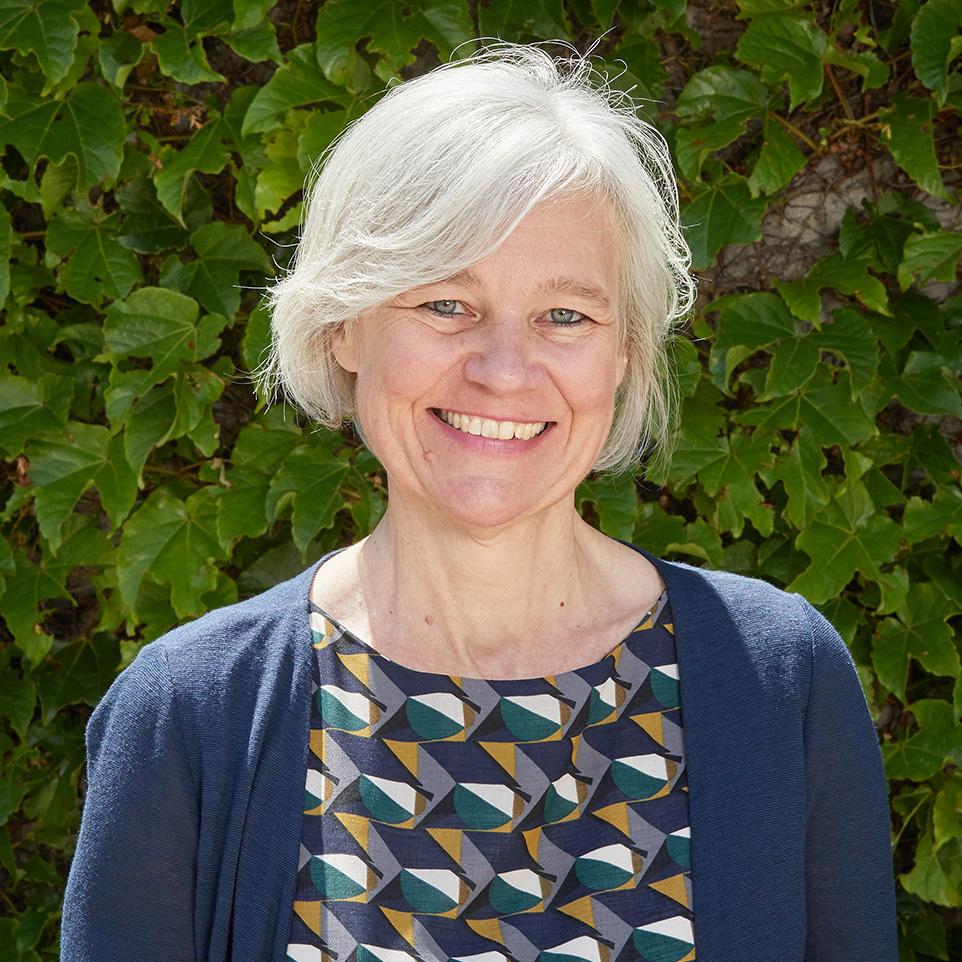 Professor Alison   Ritter