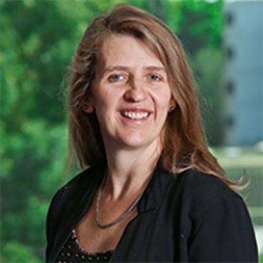 Professor Bronwen   Morgan