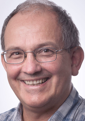 Professor Oleg P Sushkov