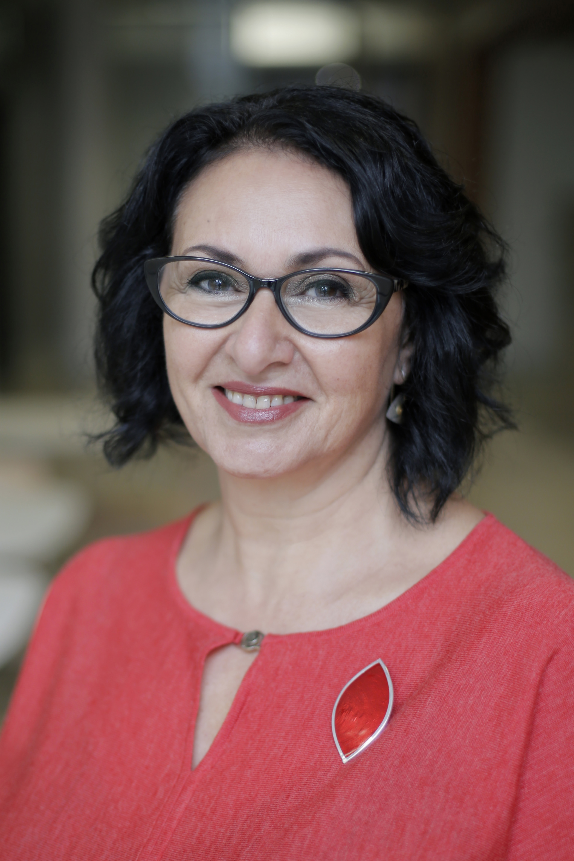 Professor Afaf   Girgis