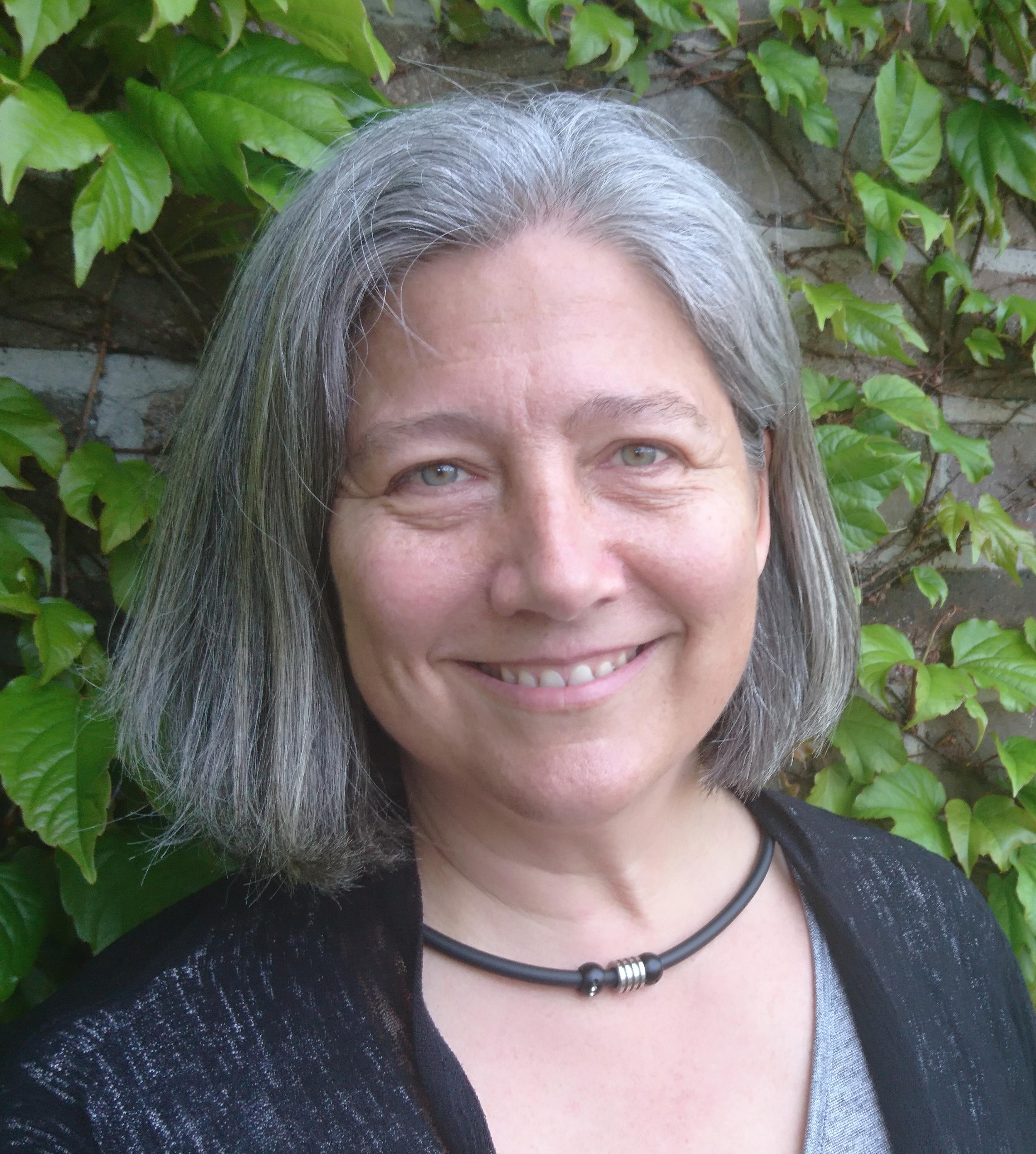 Associate Professor Lee Ann Rollins