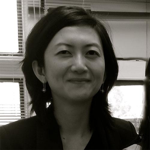 Associate Professor Fengshi   Wu