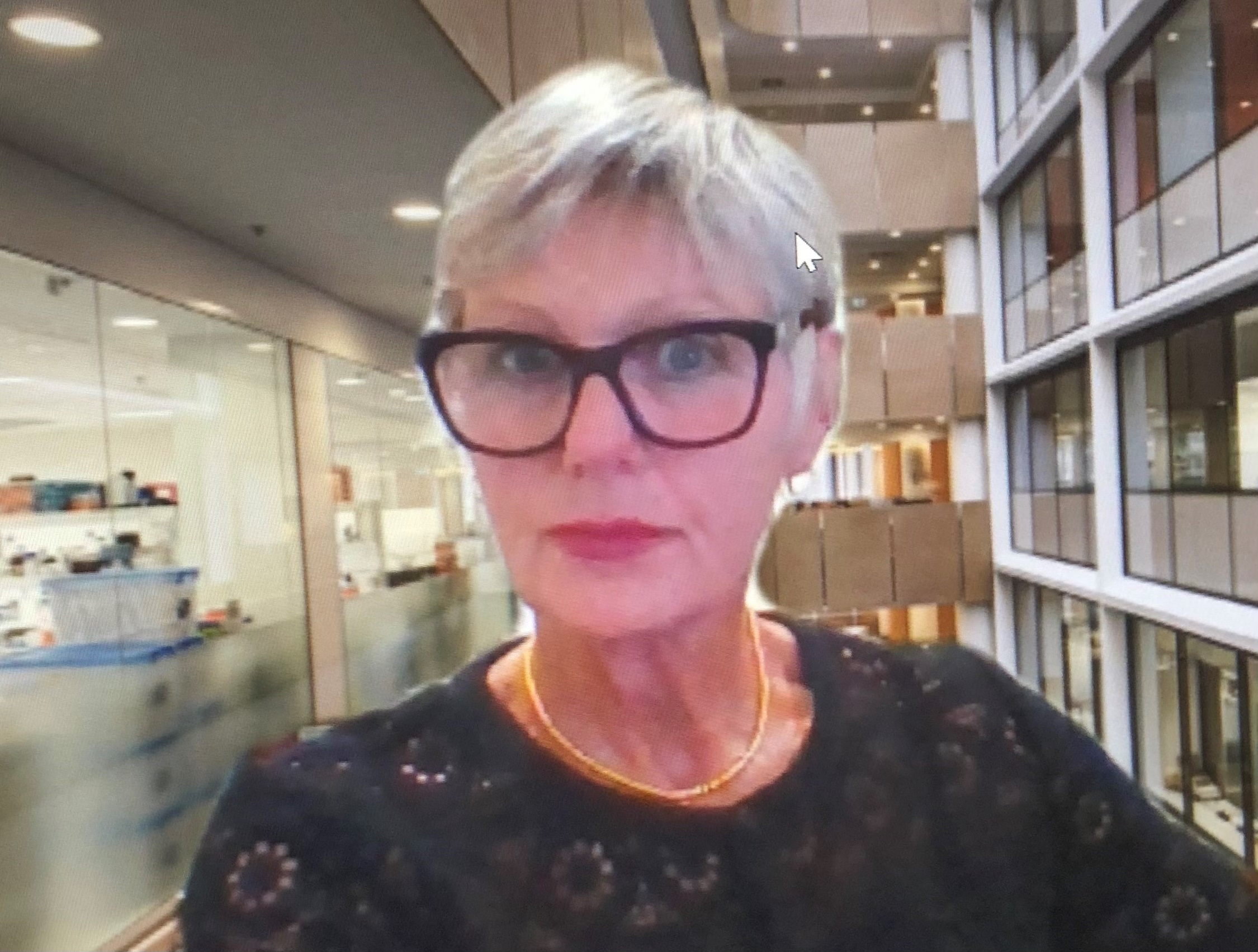 Professor Lisa   Maher