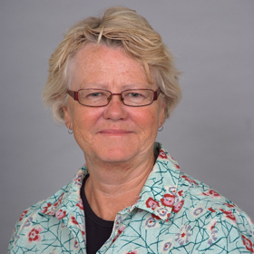 Professor Kate   Dolan